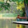 煮詰まった時には自然浴をすべき5つの理由と、私の愛するオススメ公園