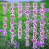 万葉の花(ナデシコ・キキョウ・ツツジ)
