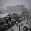 名古屋で積雪