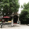 暇があったら行きたい上海のマイナーな観光地10選