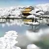 鏡湖池(京都府京都)