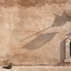 モロッコ旅行◎持ち物・トラブル対策・旅程と金額◎たびっこ女子旅