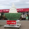富良野の贅沢なソフトクリームを食べてきました!ポプラファームのサンタのひげ