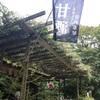 【御殿場発着ライド】箱根の甘酒茶屋と芦ノ湖遊歩道【その3】