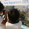 海のお魚研究所