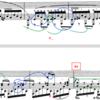 ショパンピアノソナタ3番4楽章〜循環部A4 A5 〜分析