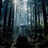 【旅行】阿蘇巡り~自然たっぷり、熊本の観光名所~