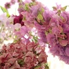 【 Happy Flower Friday ‼︎ 】vol.7