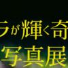 市立博物館 「オーロラが輝く奇跡の星」写真展 9/1まで開催!