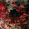 サンキライ?知りませんでした:「お花屋さんで冬の赤い実といえば「サンキライ」 との記事も.最近はそうなっているのでしょうか? わが家の秋の赤い実はナンテン,マンリョウ,それにヤブコウジ. マン・セン・ヒャク・ジュウリョウまではおめでたいとして花屋さんに並ぶ季節になりました.イチリョウ,そしてオクリョウまであるそうです.