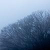 雨なので奈良県桜井市やら明日香村やらでドライブがてら撮影。
