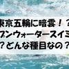 東京湾がトイレの臭い?茶色い泡??基準値以上の大腸菌。。。そこで行われるオープンウォータースイミングとは一体??
