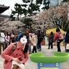 芝公園・増上寺でハスボーとお花見【ポケモンGOAR写真】
