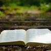 【疑問】「洗礼」はクリスチャンになる条件なのか?<後編> ~洗礼は救いの条件でも、牧師の特権でもない~