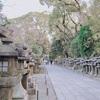 【京都旅行ブログ】八幡市で行くべき観光スポット【大人の休日・日帰り・デートにも】
