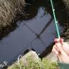 釣具ミニミニマスコット実釣編【ガチャガチャタックルで魚を釣ることはできるのか?】