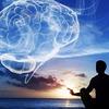 瞑想で人生は楽になる ◆ 「別冊サンガジャパン マインドフルネス」