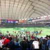 日米野球を観戦
