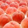 【献上桃の郷】8月22日と23日東京国際フォーラムで桃を販売するよ!