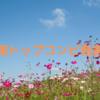 れいこちゃん&うみちゃん次期月組トップコンビ決定おめでとうございます🎉✨
