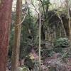 【大阪】竜王山の岩屋上部、弁財天宝塔