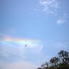 水平に見える虹「環水平アーク」