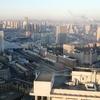 中国大連の出張者が無事に仕事を終え、中国の方が安心できると言って帰っていった。
