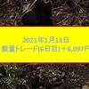 裁量トレード2021年1月13日6,097円の利益