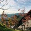 京都産業大学の風景