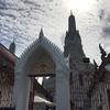 まだ一部改修中・・暁の寺『ワット・アルン』の昼顔&夜顔を見てきました。