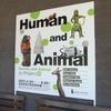 Human and Animal展