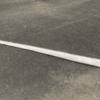 【地震前兆】2月12日に長崎県壱岐市芦辺町の内海湾に体長約4.3mの『リュウグウノツカイ』と見られる魚が漂着!!科学的には迷信という扱いだが、深海魚の漂着は地震の前兆という説も!