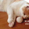茶白と白黒、ネコの毛で作った「毛玉ボール」。