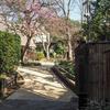 2月中旬:多摩川周辺をお写んぽ。 その2 多摩川から岡本公園民家園へ