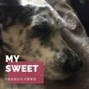 愛犬の死の寂しさ悲しさは乗り越えるものでも取り除くものでもなく