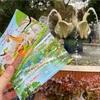 ハノイ動物園&B級遊園地(トゥーレ公園)