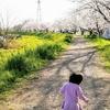 【2人目育児】1人目と比べて楽だと思っていたけれど、歩き始めたらやはり大変!