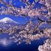 日本第一党は政権を担うべきかもしれない