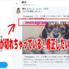 備忘録:ツイッターで投稿したブログ記事のサムネイル・アイキャッチ画像を更新する方法