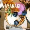 宝石パフェ!【アサコイワヤナギの世界】へようこそ。レビューブログ
