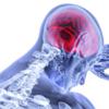 人間の脳は、心臓が止まった後、数分は、生きていることが判明!
