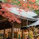 奈良、等彌神社に行ってみました D7500編 その2 そして異変