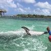 絶景のカリブ海、イルカと直に触れ合いシュノーケリングでリフレッシュ