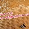 生はちみつとは純粋かつ非加熱な蜂蜜のこと