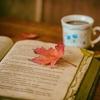 【読書】久しぶりに本を読んで気づいた2つの事。
