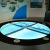 相模川ふれあい科学館に新水槽!水面歩いて魚観察 ❕