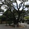 九州の旅2