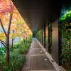 駒込にある東洋文庫ミュージアムに併設するお庭と、小岩井牧場が運営する「オリエント・カフェ」の話し。