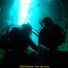 푸른 동굴 다이빙!