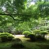 【緑】新緑の青蓮院門跡〜静かで落ち着く場所があった〜